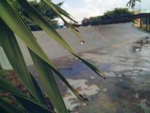 denizli wizerunku natury indyka wody siklawa obrazy royalty free