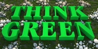 Denken Sie Grün auf grünem Gras Lizenzfreie Stockbilder