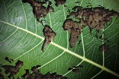 Denken Sie Grün- und Ökologiekonzept Stockfoto