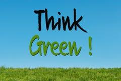 Denken Sie grünes Gras Lizenzfreie Stockfotos