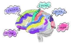 Denkende werkende menselijke hersenen vector illustratie
