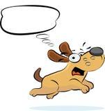 Denkender Hund Stockbild