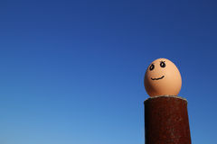Denkendes Ei, das oben zum blauen Himmel schaut Lizenzfreie Stockbilder