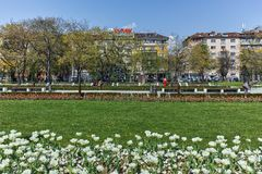 Denkmal des ersten und 6. Infanterie-Regiments im Park vor nationalem Palast der Kultur in Sofia lizenzfreie stockfotos