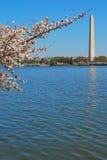 Denkmal des Washington DC Stockfotografie