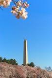 Denkmal des Washington DC Lizenzfreie Stockfotografie