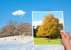 Denkwürdiger Bildherbst gegen Winter Lizenzfreies Stockbild