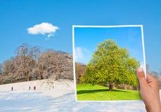 Denkwürdiger Bildsommer gegen Winter Lizenzfreies Stockfoto