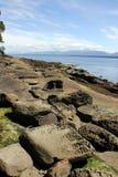 Wind blown sandstone shoreline, Denman Island, BC royalty free stock photography