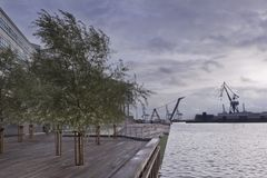 Greening the pier with trees and twilight on the beach in the city of Ã…rhus. Denmark, Aarhus - October 18, 2014: Greening the pier with trees and twilight on stock photos