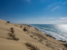Coast with sand. A picture from the westcoast of of denmark Royalty Free Stock Photo