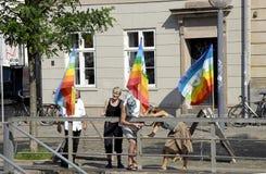 DENMARK_DANISH naród ŚWIĘTUJE FLAF dzień Zdjęcie Stock