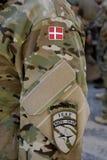 DENMARK_DANISH naród ŚWIĘTUJE FLAF dzień Obraz Royalty Free