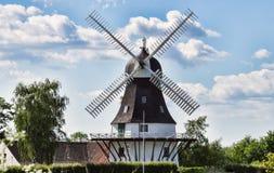 denmark egeskovfyn mal wind Fotografering för Bildbyråer