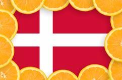 Denmark flag in fresh citrus fruit slices frame royalty free stock photography