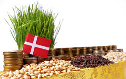 Denmark flag waving with stack of money coins and piles of wheat. And rice seeds Stock Photos