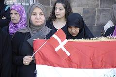 DENMARK_iraqi πιό portest Στοκ Εικόνα