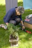 DENMARK_MS.MARGRETHE VESTAGER _NEW EU COMMISIONER Stock Photo