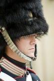 Denmark Royal guard Royalty Free Stock Images
