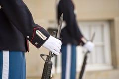 Denmark Royal Guard Stock Image