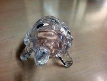 Denna är bilden av en sköldpadda som göras av genomskinligt exponeringsglas royaltyfri bild