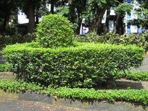 Denna är designen Shivlinga royaltyfri fotografi