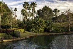 Denna är en tropisk vattenlandskapsikt med palmträd royaltyfria foton
