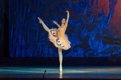 Denna eviga balettsaga Royaltyfri Bild