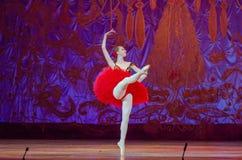 Denna eviga balettsaga Royaltyfri Fotografi