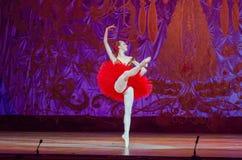 Denna eviga balettsaga Royaltyfri Foto