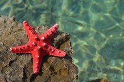 Denna gwiazda, skała i morze, obraz royalty free