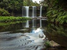 Denna härliga vattenfall som gemensamt är bekant som SHUKNACHARA, FALLER Royaltyfria Bilder
