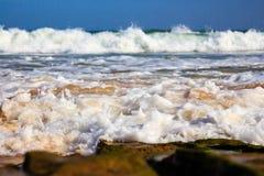 Denna kipiel i kiść na plaży Fotografia Royalty Free
