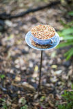 Denna kopp är för fåglarna Royaltyfria Bilder