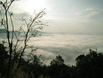 Denna mgła w ranku Zdjęcia Royalty Free