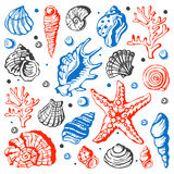 Denna morska ręka rysująca skorupy nakreślenia wektoru ilustracja Fotografia Royalty Free