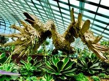 Denna phoenix göras av naturliga trädträn arkivfoto