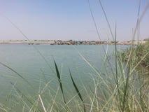 Denna plats av floden Djur går på banken av floden arkivbild
