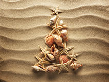 Denna skorupa na piasku Obrazy Stock