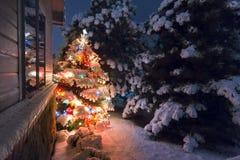Denna snö täckte julgran står ut ljust mot mörkret - ljus för afton för blåttsignaler på senare i denna sce för vinterferie arkivbild