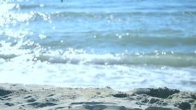 Denne fala na piasek plaży zbiory wideo
