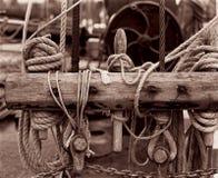 Denne kępki, denny regatta, monochrom obrazy royalty free