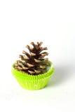 Denneappel in cupcakegeval Royalty-vrije Stock Fotografie