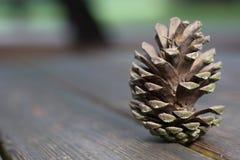 Denneappel op houten lijst Stock Afbeelding