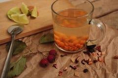 Dennego buckthorn herbata w przejrzystym kubku i róży modnym wapnie Rozgrzewkowy zima napój Zdjęcie Stock