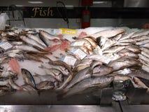 Dennego jedzenia zupna garnela przy rybiego rynku promocją Fotografia Royalty Free