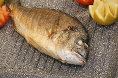 Dennego leszcza ryba piec na grillu w niecki restauraci specjalizuje się w seaf Obrazy Stock