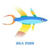 Dennej ryba koloru wektoru ilustracja Obrazy Stock