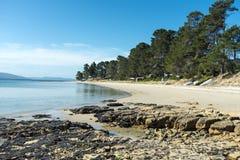 Dennes pekar den Bruny ön Tasmania Arkivfoto