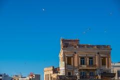 Denni frajery i go??bie lataj? nad dachem porzucony budynek przeciw niebieskiemu niebu w Aegina, Grecja zdjęcia stock